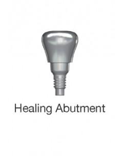 Healing Abutment